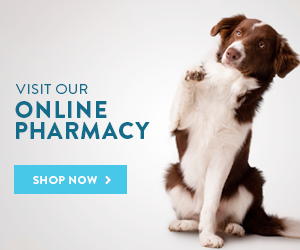 Visit our online pharmacy. Shop Now