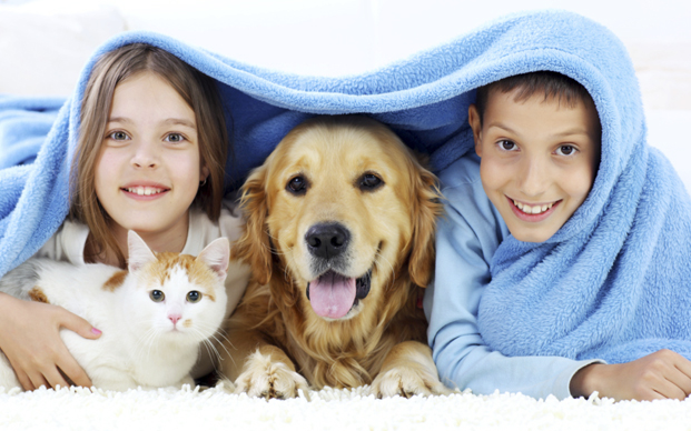 Young boy and girl with dog and cat