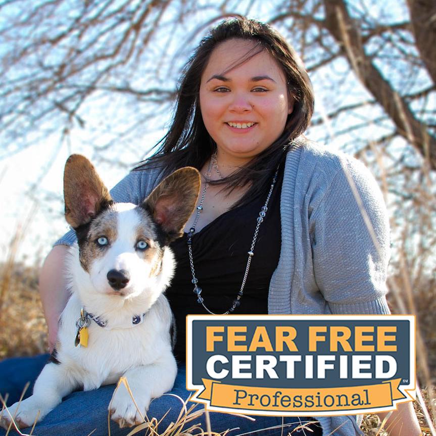 Dr Watts is Fear Free Certified