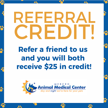 Client Referral Coupon