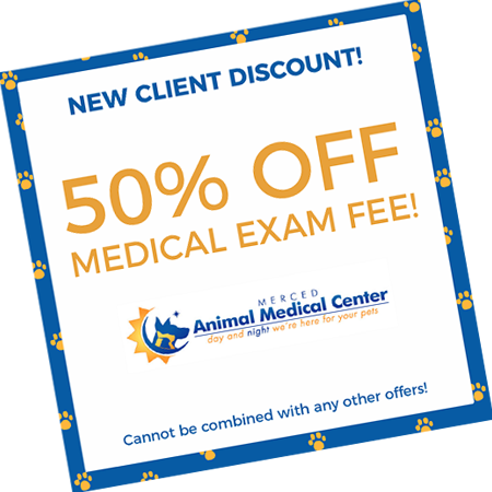 New Client Discount! 50% Off Medical Exame Fee! Cannot be combined with any other offers!