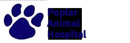 Poplar Animal Hospital