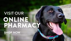 Online Pharmacy Shop Now