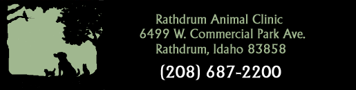 Rathdrum Animal Clinic