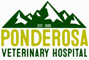 Ponderosa Veterinary Hospital