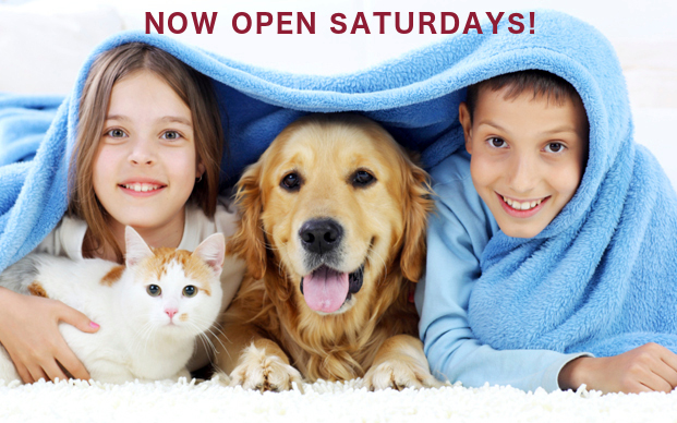 Fairview Drive Pet Hospital - Brantford Vet Clinic
