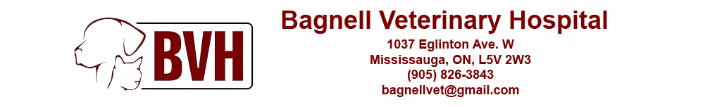 Bagnell Veterinary Hospital