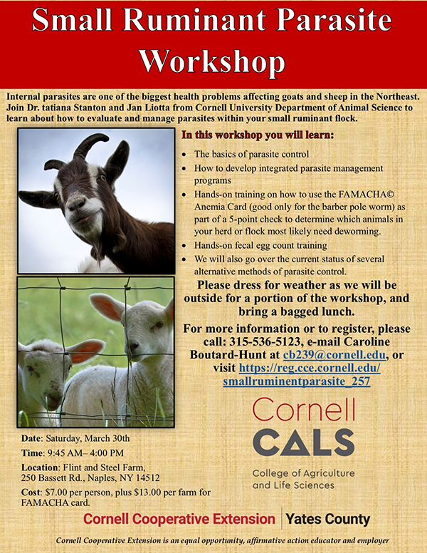 Small Ruminant Parasite Workshop Saturday March 30th 9:45am at Flint and Steel Farm