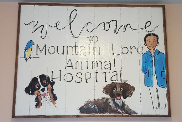 Welcome to Mountain Lore Anamal Hospital