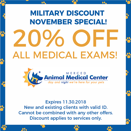 November Military Special