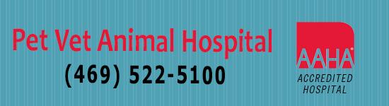 Pet Vet Hospital Banner