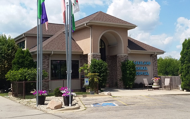 The outside of our veterinary hospital in McFarland, WI