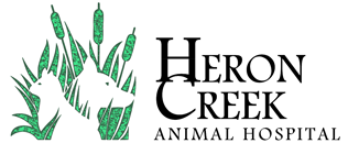 Heron Creek Animal Hospital