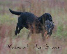 Kacie at the Grand