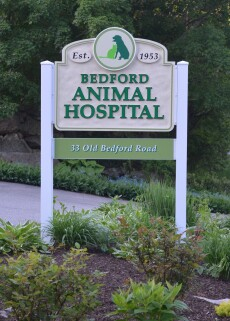 Animal Hospital, Bedford, NH