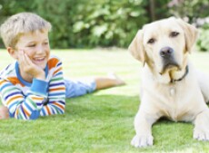 Boy laying in grass with dog