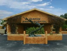 The outside of our veterinary hospital in Tarpon Springs, FL