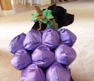 Dog wearing a grape costume